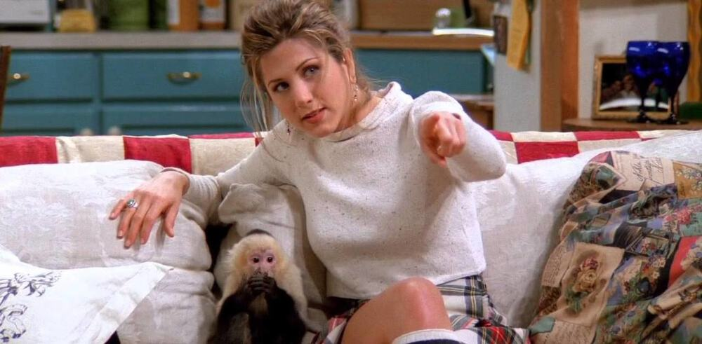 Marcel the Monkey and Rachel