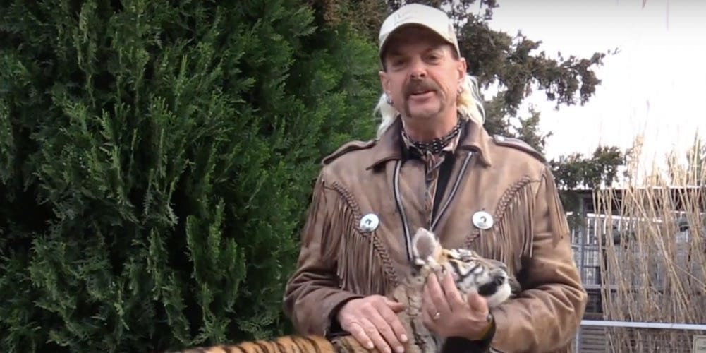 netflix show tiger king