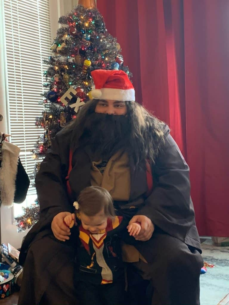 Hagrid, Santa, Harry Potter, Christmas