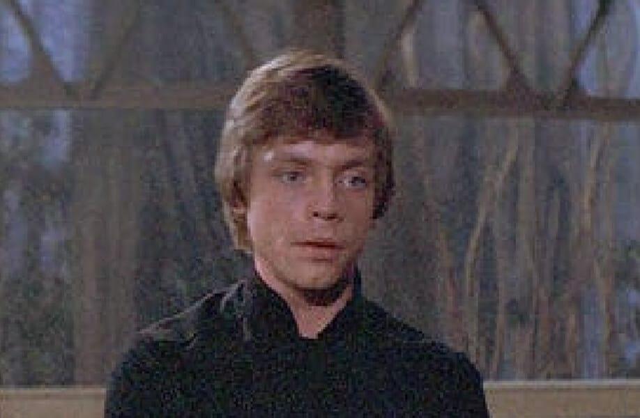 Luke Skywalker: The protagonist of Star Wars and Darth Vader's son